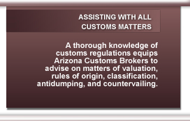 All Customs Matters